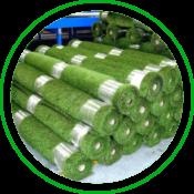 Grass Artificial